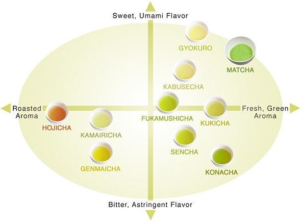 4 Distinct Varieties for the Beginning Green Tea Connoisseur